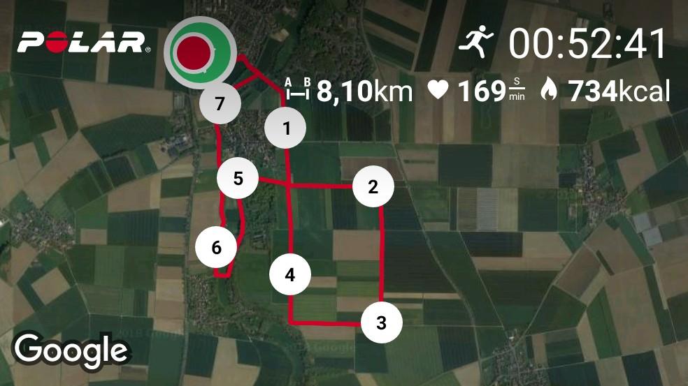 Polar Aktivitätsübersicht 5 km in 30 Minuten